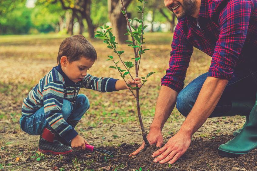 familia plantando arbol